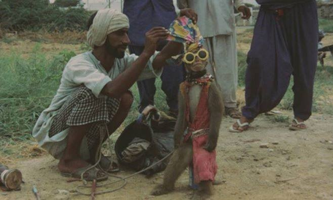 Old Pakistan Pictures (275)