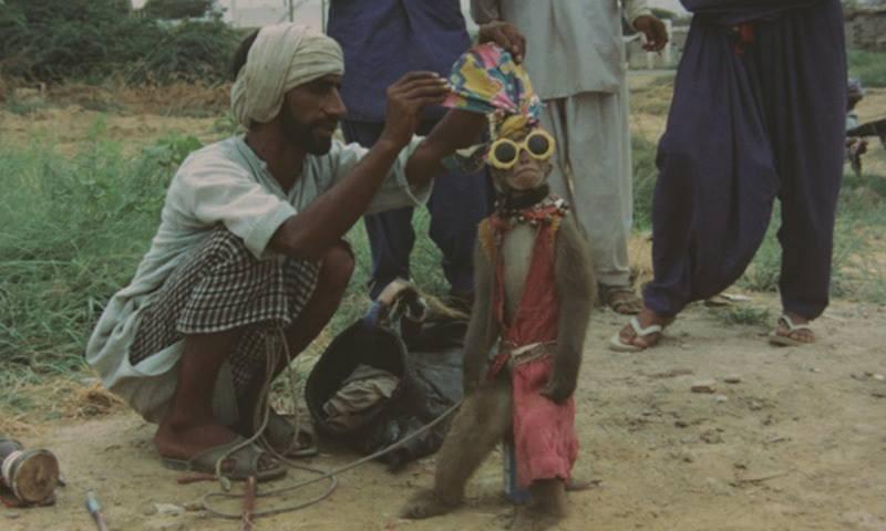 Old Pakistan History (1)
